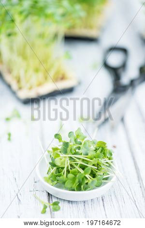 Cutted Cress (selective Focus)