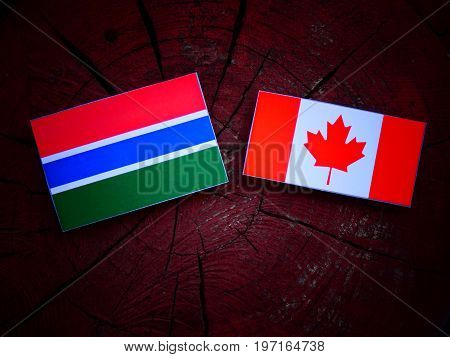 Gambian Flag With Canadian Flag On A Tree Stump Isolated
