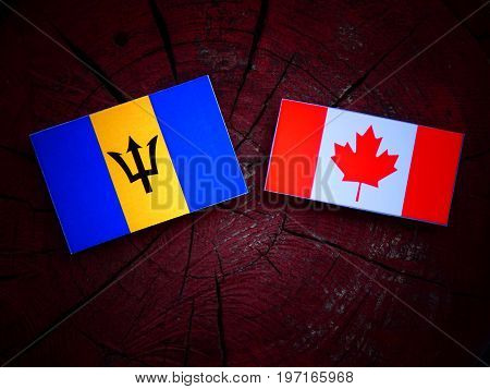Barbados Flag With Canadian Flag On A Tree Stump Isolated