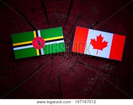 Dominica Flag With Canadian Flag On A Tree Stump Isolated