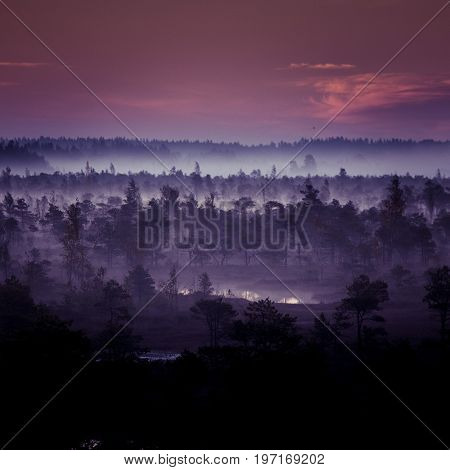 A beautiful colorful artistic landscape of a marsh in sunrise in autumn.