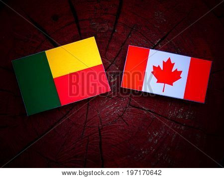Benin Flag With Canadian Flag On A Tree Stump Isolated