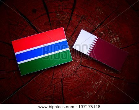 Gambian Flag With Qatari Flag On A Tree Stump Isolated