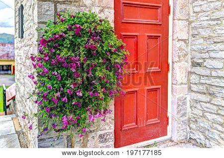 Purple Pink Magenta Calibrachoa Or Petunia Flowers Hanging In Basket By Church With Red Door