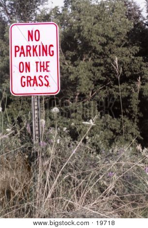 No Grass Parking