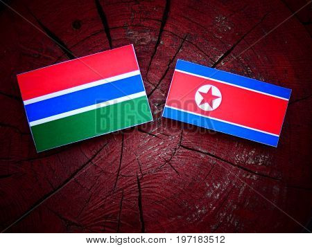 Gambian Flag With North Korean Flag On A Tree Stump Isolated