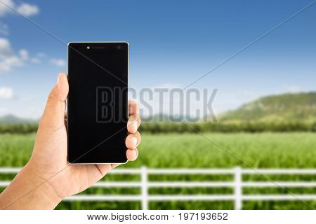 Hand Use Smartphone With Beautiful Field In The Blue Sky