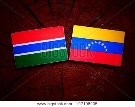 Gambian Flag With Venezuelan Flag On A Tree Stump Isolated
