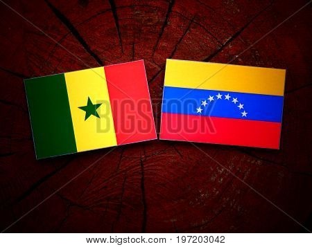 Senegal Flag With Venezuelan Flag On A Tree Stump Isolated