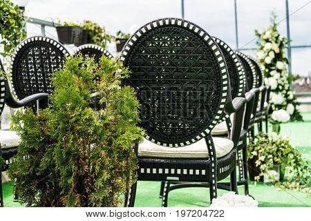 Wedding chairs aisle with the green plants decorated on the floor