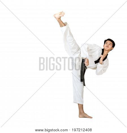 Portrait Of An Asian Professional Taekwondo Black Belt Degree (dan) Kick. Isolated Full Length On Wh