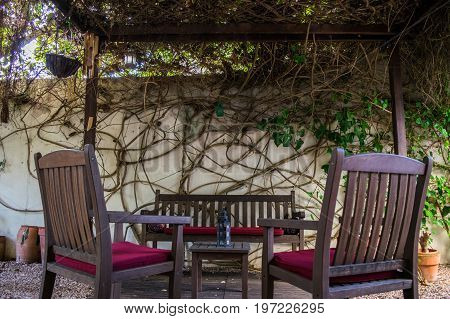 Chilling vintage cosy Spanish terrace with table and chairs and ivy on the wall