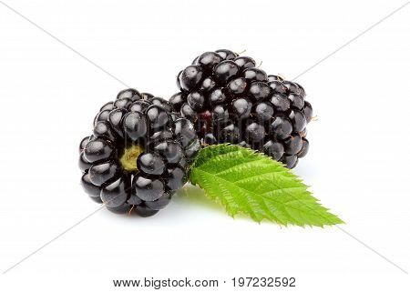Fresh blackberries with leaf. Isolated on white background.