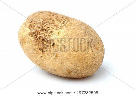 Raw potato isolated closeup on white background.