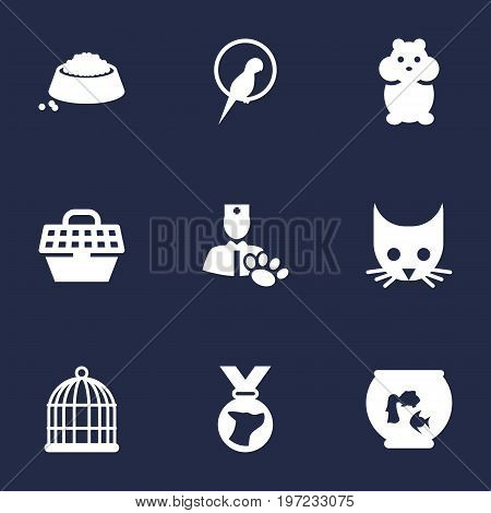 Collection Of Fishbowl, Veterinarian, Rat And Other Elements.  Set Of 9 Animals Icons Set.