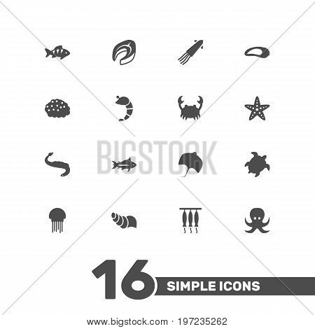Collection Of Smoked, Fish, Beefsteak And Other Elements.  Set Of 16 Seafood Icons Set.