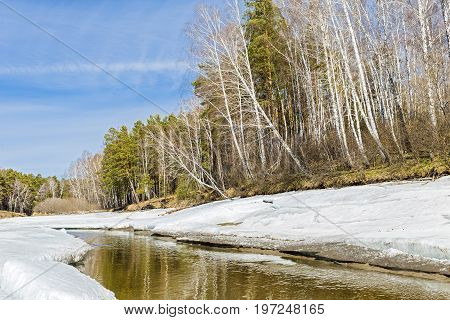 Spring landscape with melting ice on the river. The Separate river ( a tributary of the Ob river ) in Novosibirsk oblast Siberia Russia