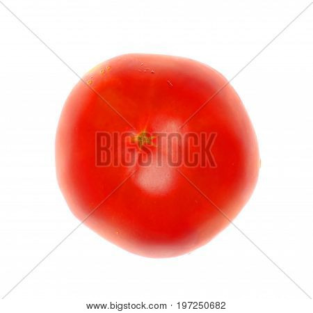 Isolate red fresh tomato, a close up photo image on bottom side of red fresh tomato isolate on bright white light background present a detail on red tomato surface in a bottom side