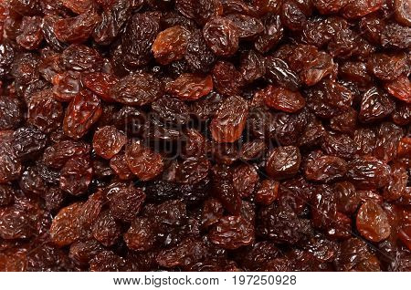 Brown raisin pile, a close up photo image on surface of brown raisin pile present a detail of texture and pattern on brown raisin pile surface can use for a texture or pattern back ground