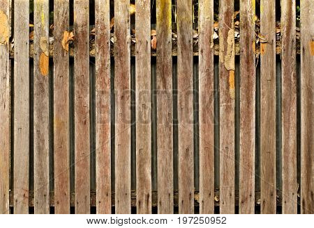 Old wooden fence, a close up photo image of old wooden fence that consist of a lot of long wood plate, a surface of wood has a damage scar from termite staple and humidity, can use for a background