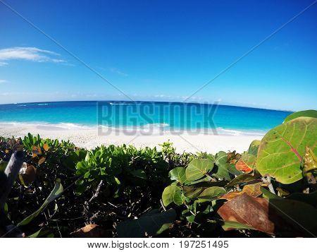 FishEye Photo: Tropical beach during a sunny day in the Bahamas. Paradise Island, Nassau.