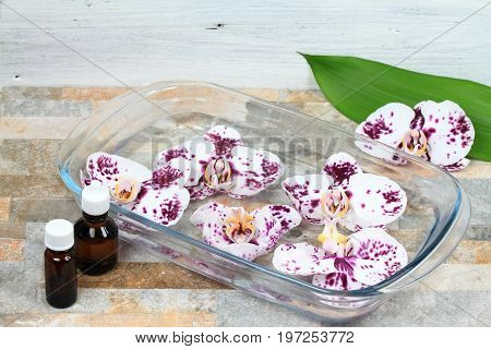 Making Bach flower remedy from beautiful orchids. Bach flower remedies is natural method of healing