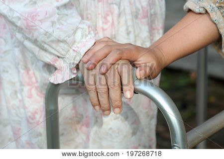 senior woman uses a walker with caregiver .