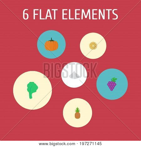 Flat Icons Citrus, Ananas, Onion And Other Vector Elements