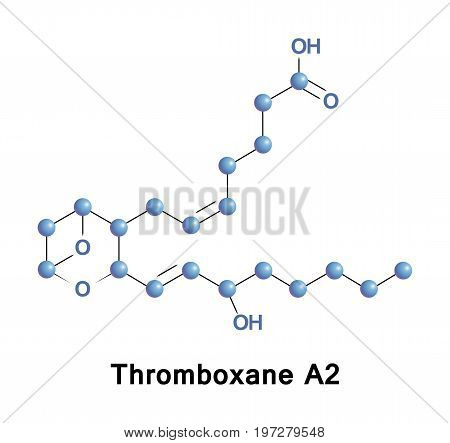 Thromboxane A2 is a type of thromboxane that is produced by activated platelets and has prothrombotic properties, it stimulates activation of new platelets as well as increases their aggregation