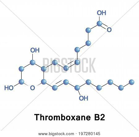 Thromboxane B2 is an inactive metabolite of thromboxane A2. It is almost completely cleared in the urine.