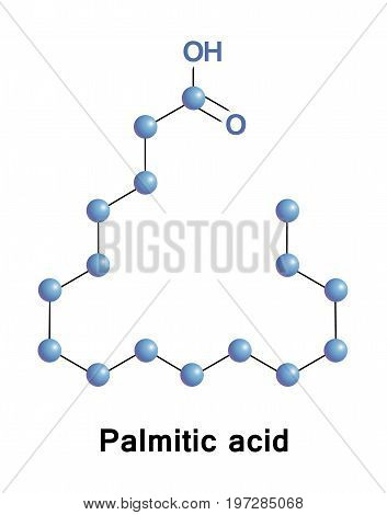 Palmitic, or hexadecanoic acid, is the most common saturated fatty acid found in animals, plants and microorganisms