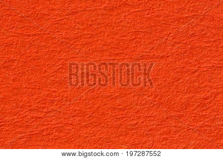 Close up of orange texture background, macro shot. High resolution photo.