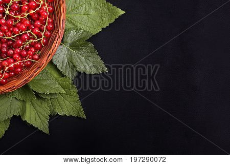 A partial beautiful composition of fresh red currant with fresh leaves in a small crate on a black background. Juicy and delicious red currant in a brown basket. Healthful breakfast for vegetarians.