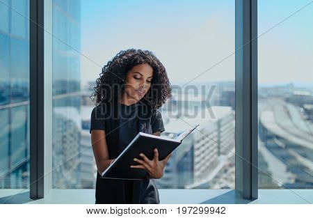 Businesswoman writing in a book standing near window in office. Businesswoman standing in her office in a highrise building overlooking the cityscape.