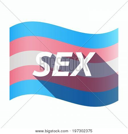 Isolated Transgender Flag With    The Text Sex