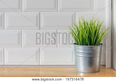 Beautiful houseplant with flowerpot on light wooden office table texture and white background captured by front view
