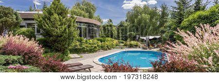 Inspiring Garden With Pool