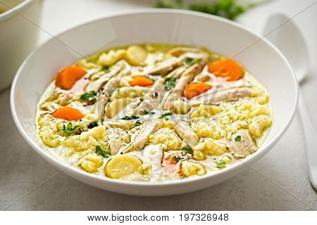 Wholesome chicken soup stew with carrot, parsnip and poured noodles