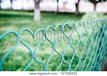 Green fence in the form of a heart