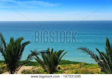 Scenic coastline of Sea of Cortez from Los Cabos Mexico