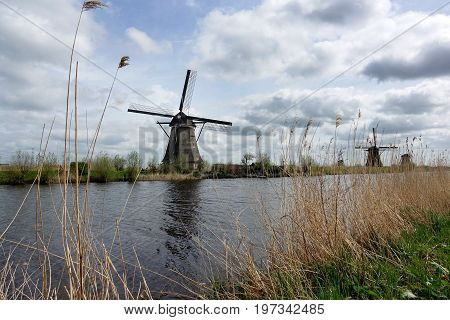 Dutch Windmills In The Afternoon Build And Standing Next To Polder Water In Kinderdijk South Holland