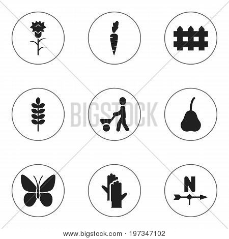 Set Of 9 Editable Planting Icons. Includes Symbols Such As Wooden Barrier, Man With Trolley, Monarch And More