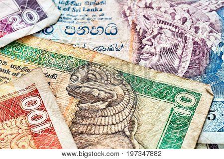 Close Up Picture Of Sri Lankan Rupee