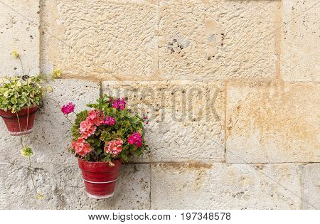 flowerpots on a stone made wall with geranium flowers for decoration