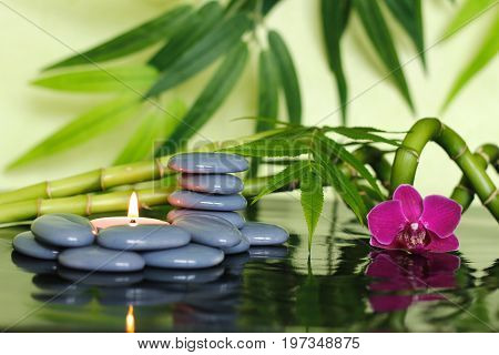 Gray pebbles arranged in Zen lifestyle with bamboo stalks, an orchid and a lighted candle
