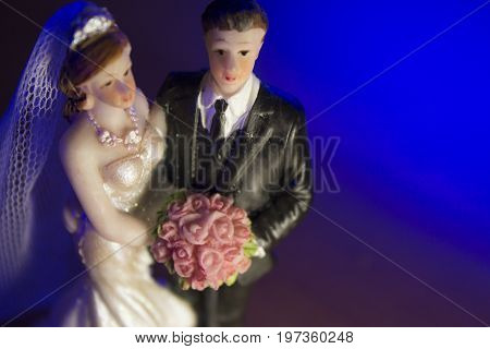 Newlyweds embraced bride and groom. Standard wedding cake topper