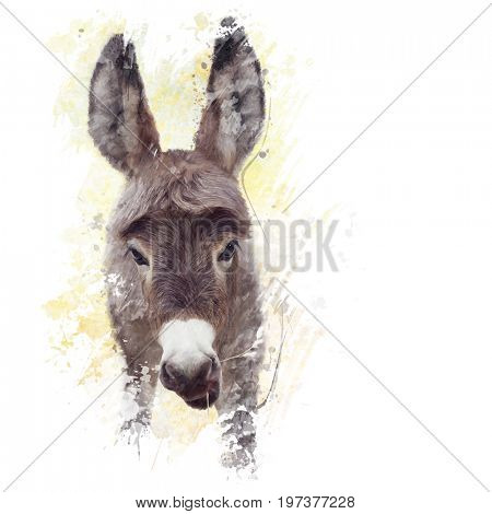 digital painting of young donkey mule