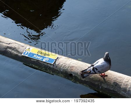 Floating timber boom on river to stop the progress of floating debris with danger keep off sign