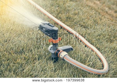 Garden Lawn Sprinkler In Action 2