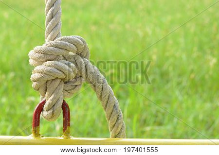 The rope tied to steel ring with green grass background,as a symbol for relationship, harmony, teamwork or collaboration.